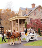 Fritz Farm Carriage Service